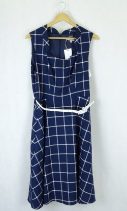 Review Blue And White Check Dress 12